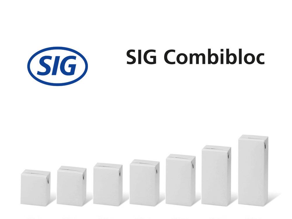 Projekt_SIG_Large_NEU_Reihe
